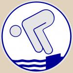 Schwimmabzeichen - Silber